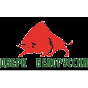 Двери Белоруссии (5)